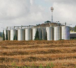 Farm Grown Solutions