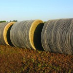 Bales stored outdoors - John Deere B-Wrap™