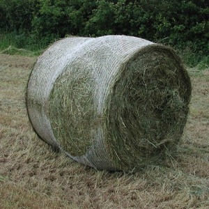 Bale net wrap Bursting