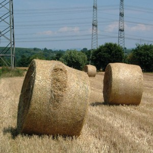 Bale Netwrap Bursting