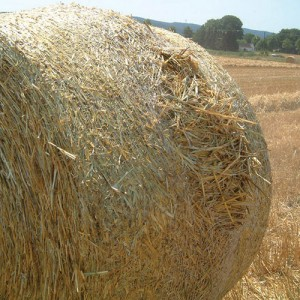 Netwrap Bales Bursting