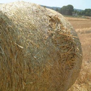 Netwrap Bales Bursting
