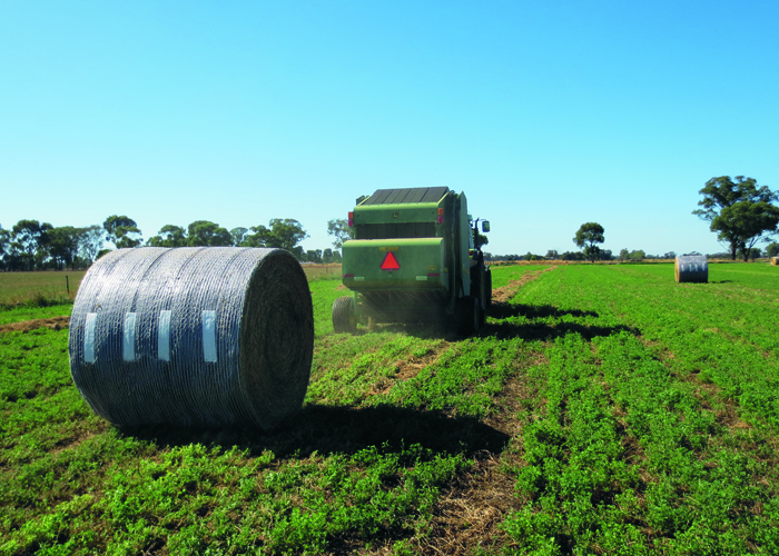 Hay, Silage and straw