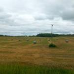 John Deere B-Wrap™ hay crop
