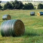 Barn-Quality Hay John Deere B-Wrap™