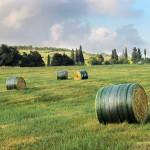 Bales stored outdoors - John Deere B-Wrap™